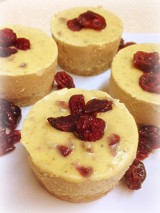 Orange Cranberry Pleasecakes